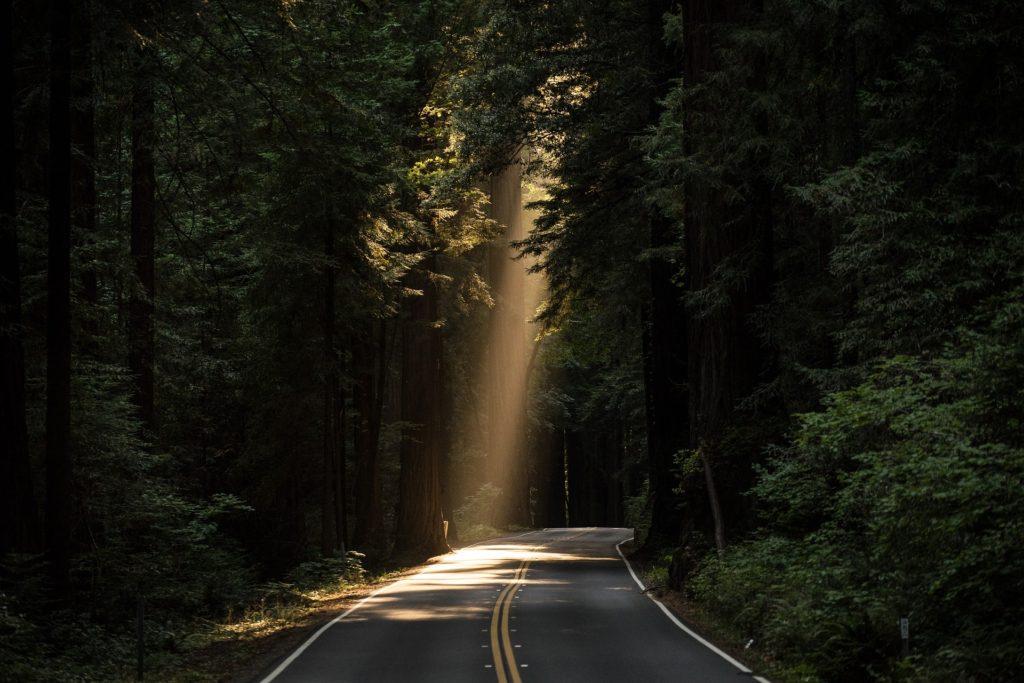 影ではなく光を探す